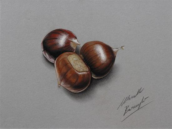 Realistic-Colored-Pencil-Drawings-by-Marcello-Barenghi (25)