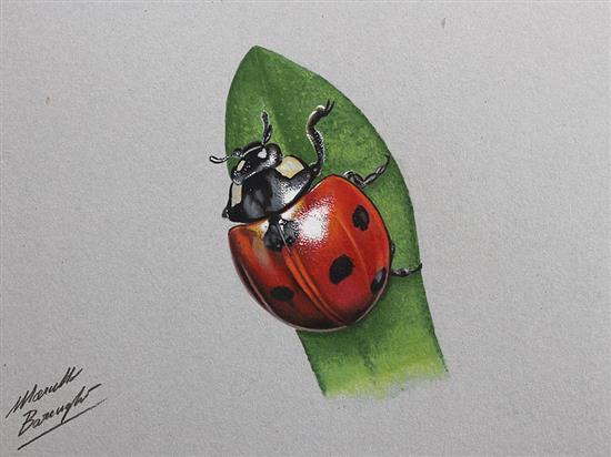 Realistic-Colored-Pencil-Drawings-by-Marcello-Barenghi (62)