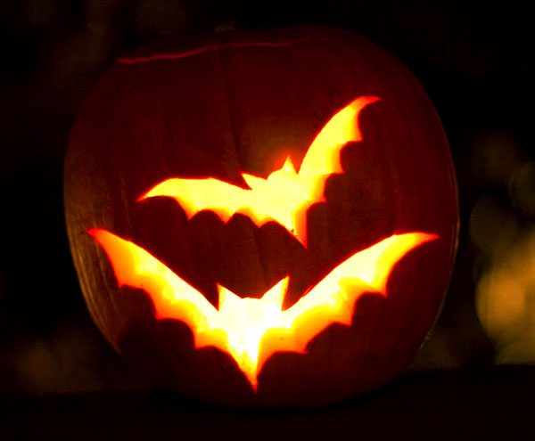 Bats_Pumpkin_carving_Ideas