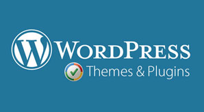 Avoid-10-Common-Mistakes-Before-Launching-A-New-WordPress-Website-Blog