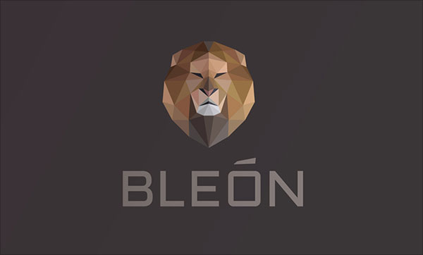 Bleon-Logo-Design-Examples