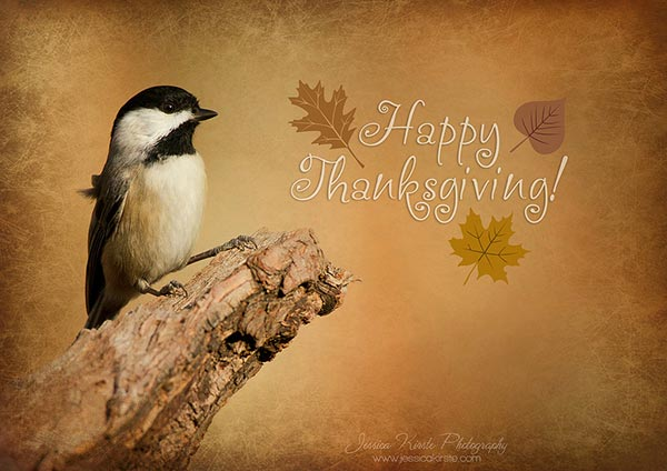 Happy-Thanksgiving-Photo