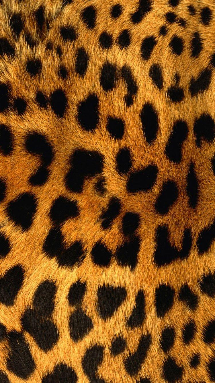 Leopard-Texture-iPhone-6-Wallpaper