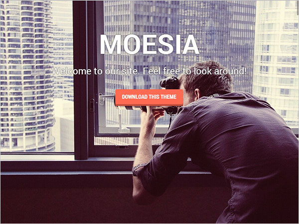 Moesia-Perfect-Business-WP-theme-2014