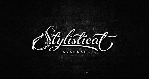 30 Perfectly Crafted Script Logotype Examples by Dalibor Momcilovic (11)