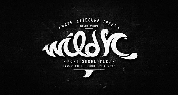 30 Perfectly Crafted Script Logotype Examples by Dalibor Momcilovic (15)