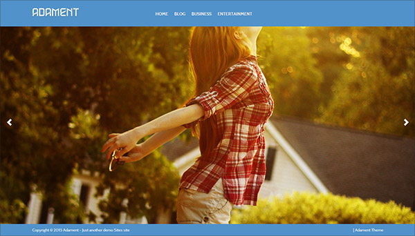 Adament  Free Photography Blog Theme 2015