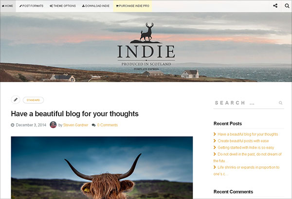 Indie-beautiful-free-blogging-wp-theme-2015