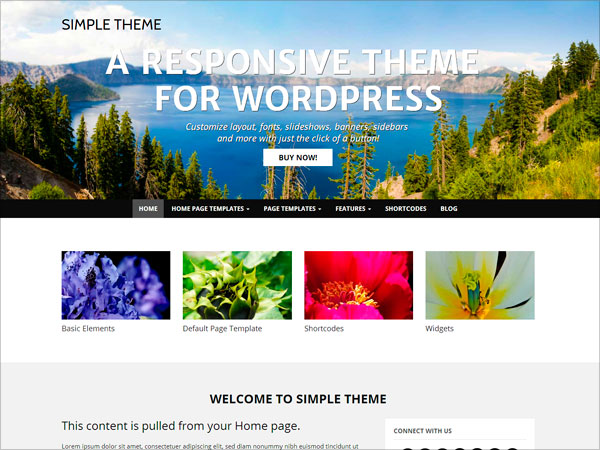 wp-simple-wordpress-theme-for-2015