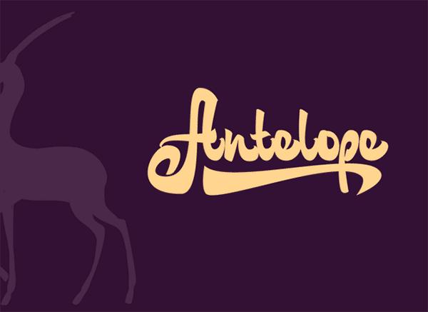 Antelope-Logotype-Example