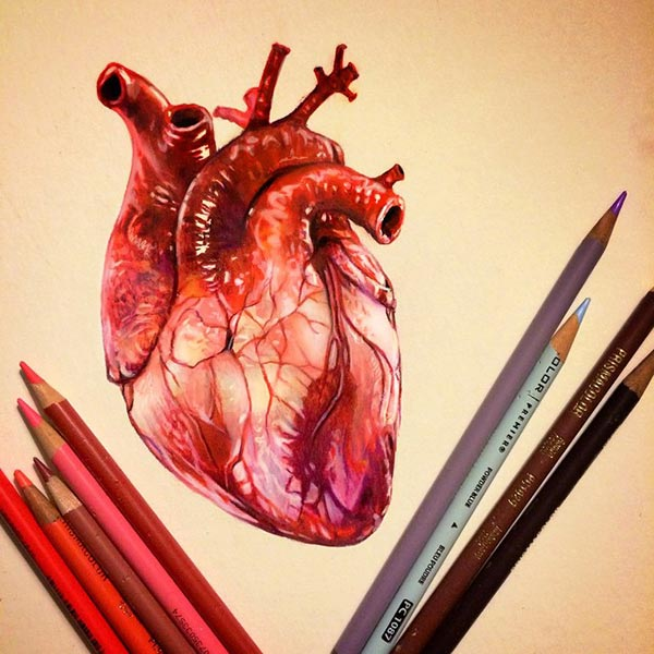 Astonishing Color Pencil Drawings (8)
