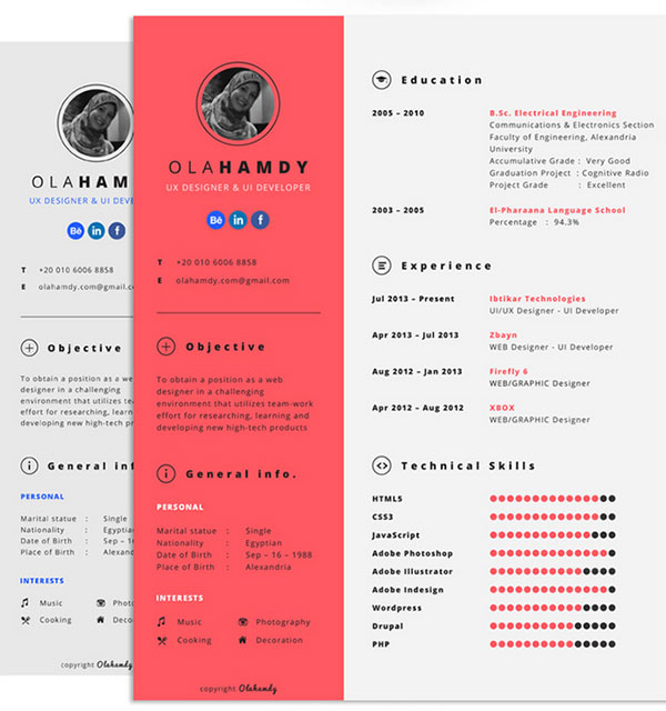 professional resume template indesign free 2015 download