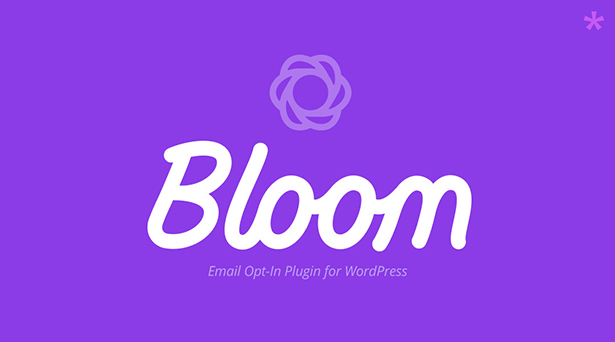 bloom-banner-purple