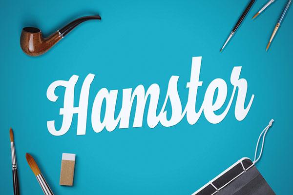 Hamster-Free-Bold-Script-Font