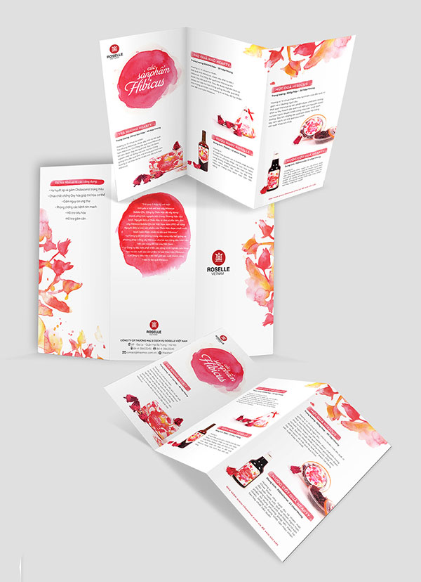 Roselle-Vietnam-Brochure-Redesign-Project