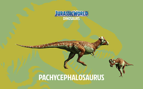 pachycephalosaurus-Dinosaur-Jurassic-World-Wallpaper-HD