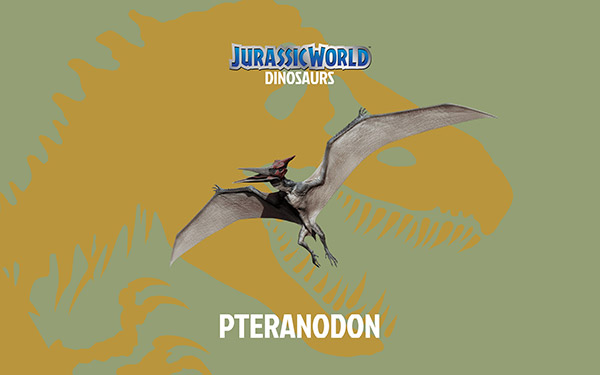 pteranodon-Dinosaur-Jurassic-World-Wallpaper-HD