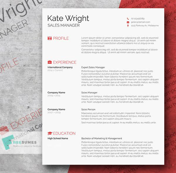 Nice Free Word Resume Template