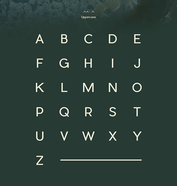 PIER-SANS-FREE-Perfect-San-Serif-with-4-styles-2