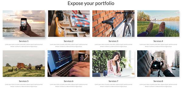 monstroid-portfolio