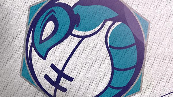 Charlotte-Hornets-2