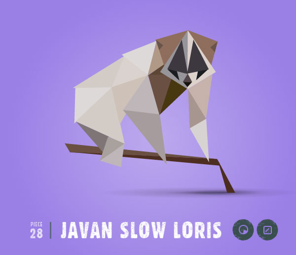 JAVAN-SLOW-LORIS