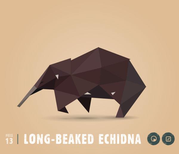 LONG-BEAKED-ECHIDNA