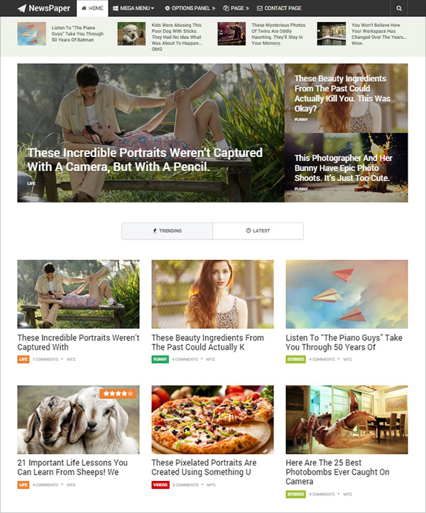 NewsPaper-Premium-Wordpress-Theme-for-professional-bloggers