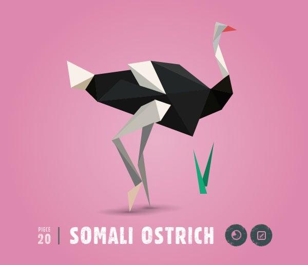 SOMALI-OSTRICH