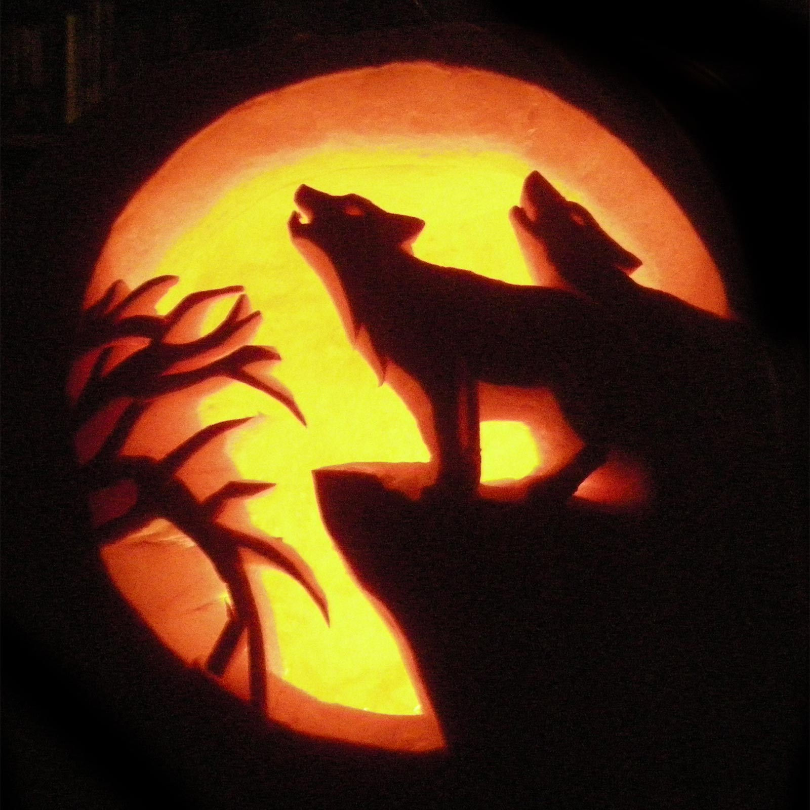 scary wolf pumpkin carving ideas 2015 - Free Scary Halloween Pumpkin Carving Patterns