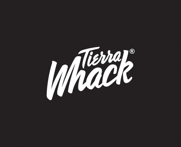logo-design-Typography-examples-(2)