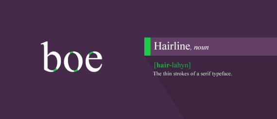 19. Hairline