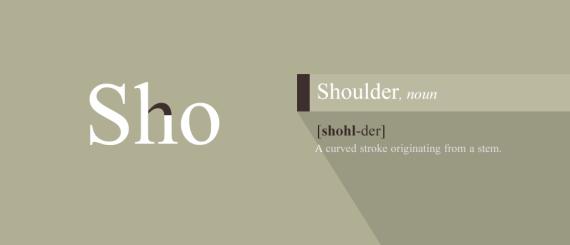 8. Shoulder