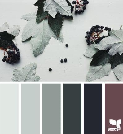 AutumnTones8