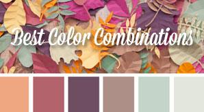 Best-color-combinations