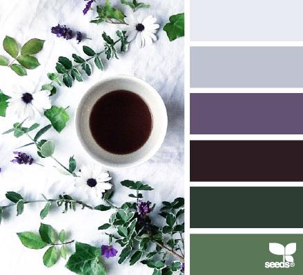 ColorServe3