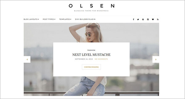 Olsen-wordpress-theme-2016