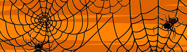 Spider-web-twitter-header-banner-2015