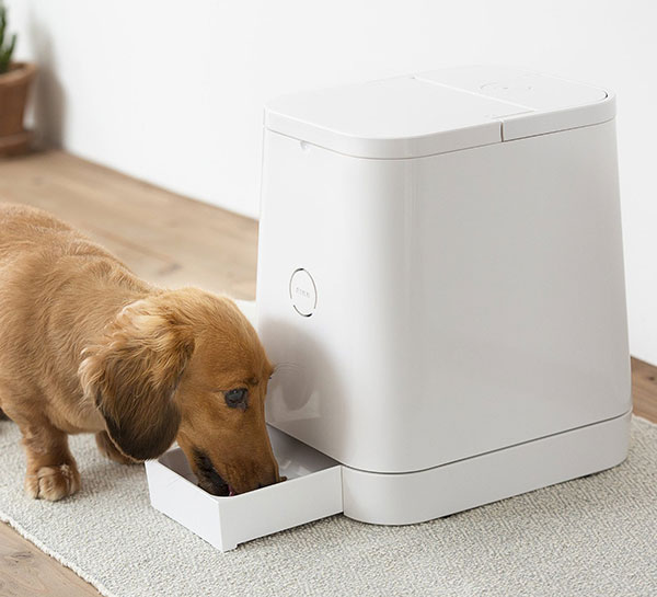 Automatic-Pet-Feeder-2
