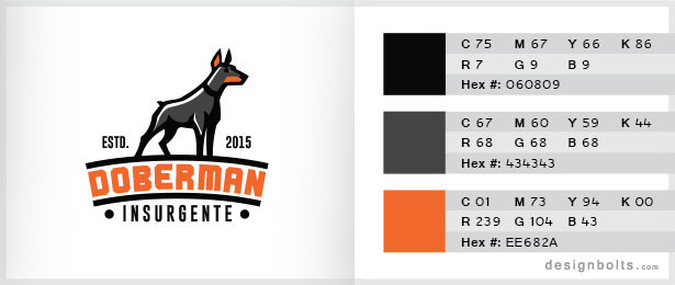 Black-&-Orange-Color-Combination-05