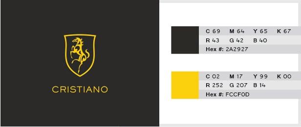 Grey Yellow Color Combination