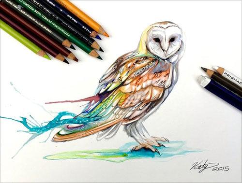 nspiring-Color-Pencil-Drawings-of-Animals-2016-(23)