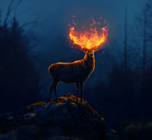 Fantasy-Flaming-Deer-Adobe-Photoshop-CC-Tutorial