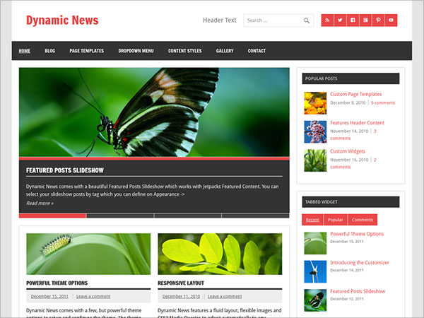 Dynamic-News-Responsive,-multipurpose-blogging-and-magazine-theme
