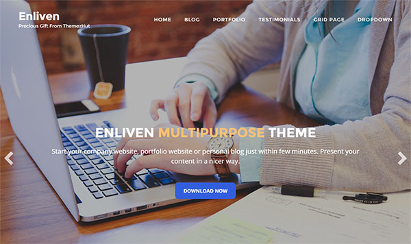 Enliven-Modern-Multipurpose-Business-WordPress-theme