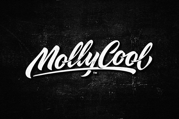 Perfectly-Crafted-Script-Logotype-Example-(21)