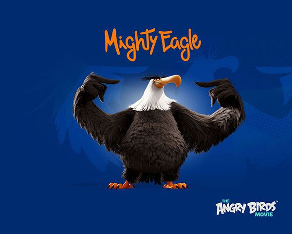 Mighty-Eagle-Any-Bird-Wallpaper-HD