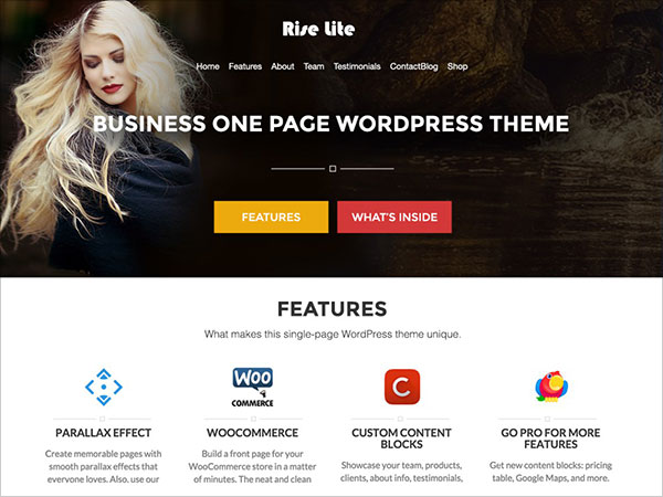 Rise-Lite-free-one-page-WordPress-theme-2016