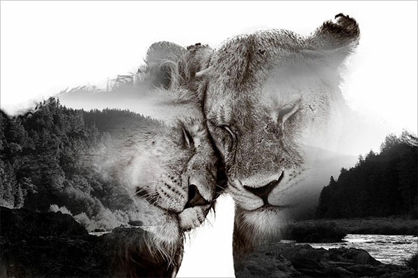 Amazing Double Exposure Photography (29)