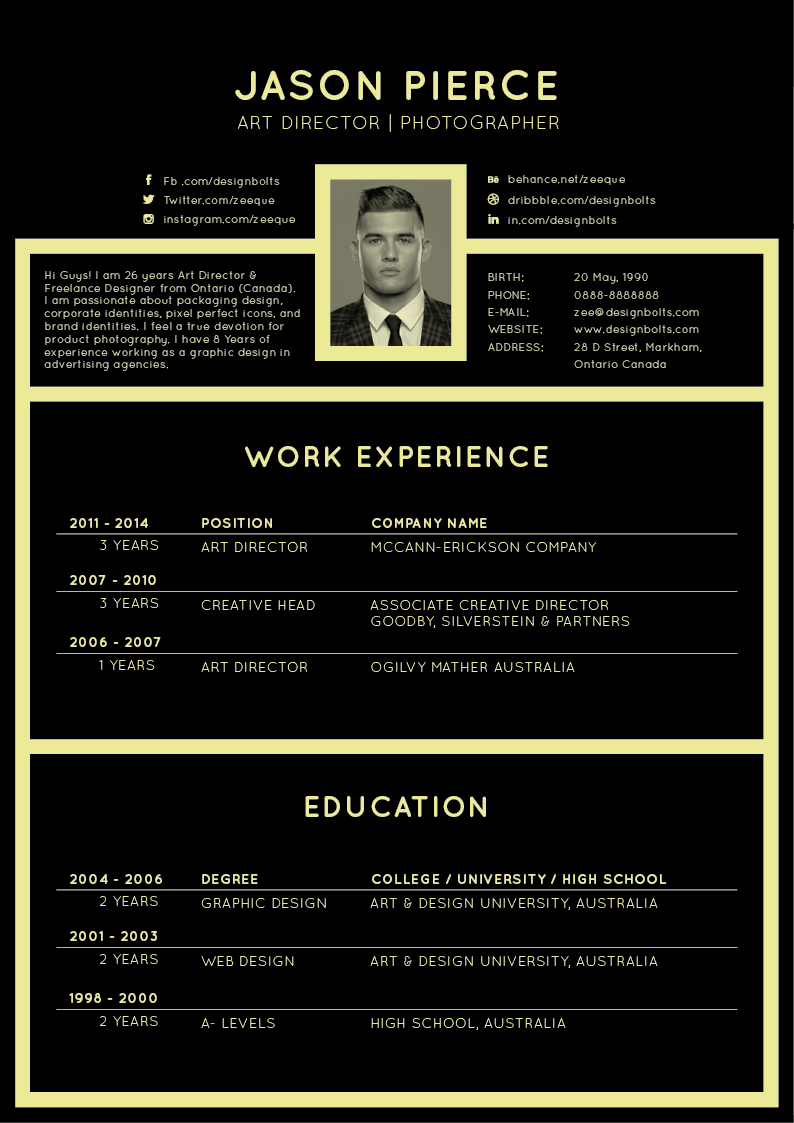 free professional resume cv design template for all job seekers - Free Professional Resume Format